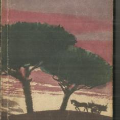 MOARTEA  LA  LICITATIE - J.M.CASTILLO - NAVARRO