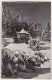 bnk cp Iarna la Poiana Brasov - Vedere - uzata