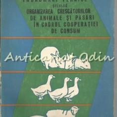 Indrumari Tehnice Privind Organizarea Crescatoriilor De Animale Si Pasari