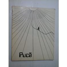 Florin Puca cuvant inainte de Fanus Neagu