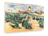 Cumpara ieftin Tablou pe panza (canvas) - Vincent Van Gogh - Mount Majour - 1888 (Dimensiuni...