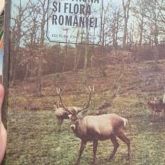 Din fauna si flora Romaniei – Ion Simionescu
