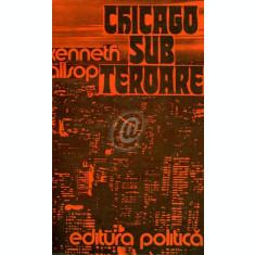 Chicago sub teroare