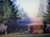 Case 2teren 1250 mp Valea Doftanei,ocazie ,unic proprietar