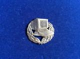 Insignă militară - Semn de armă - Calculatoare și Informatică (culoare argintiu)