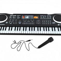 Orga electronica cu microfon, 61 clape, 10 ritmuri, 8 sunete de tamburine