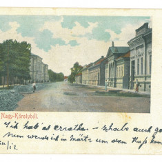 4982 - CAREI, Satu-Mare, Litho, Romania - old postcard - used - 1900