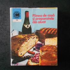 MARIA ARDELEANU - PAINEA DE CASA SI PREPARATELE DIN ALUAT