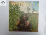 Peter Tosh Legalize it disc vinil NM