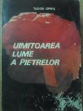 UIMITOAREA LUME A PIETRELOR - TUDOR OPRIS