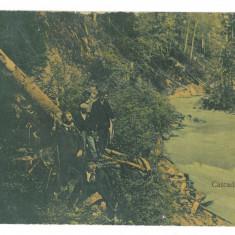 4838 - CASCADA LOTRULUI, Valcea, Romania - old postcard - used - 1908