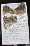 CP Litografie Salutari din Bucuresci Bucuresti Kiseleff Stavreopoleos circ. 1900, Circulata, Printata