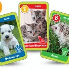 Animal Kindergarten Series - 8 rare cards from Mega Image CG.018