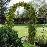 Arcada metalica de gradina pentru flori cataratoare, 240 x 140 x 38 cm, ZN0010