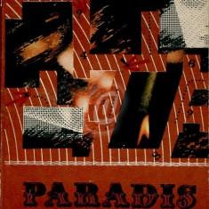 Paradis iluzoriu. Lumea drogurilor - o lume a degradarii umane