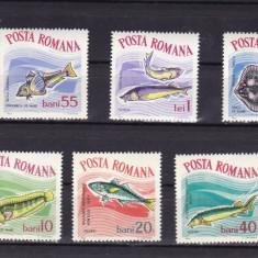ROMANIA 1964  LP 582  PESTI  DIN ACVARIUL  DE  LA CONSTANTA  SERIE  MNH