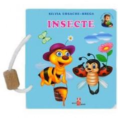 Insecte - Silvia Ursache-Brega