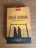 Cumpara ieftin Doua surori - din Norvegia în jihadul din Siria de Asne Seierstad
