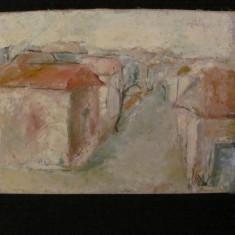 """PVM - Tablou """"Ulita cu Case"""" u/p lipita pe carton semnat indescifrabil / 1981"""