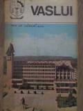 VASLUI MONOGRAFIE-PETREA IOSUB, AUREL ZUGRAVU