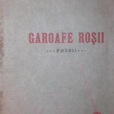GAROAFE ROSII - CLAUDIA MILLIAN