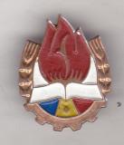 Bnk ins Insigna pionier - alama vopsita - MS, Romania de la 1950