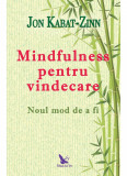 Cumpara ieftin Mindfulness pentru vindecare