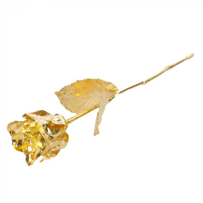 Trandafir placat cu aur de 24k în cutie roșie, United Entertainment