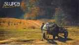Carte postala Bucovina SV144 Stupca - Intr-o buna zi de toamna - necirculata