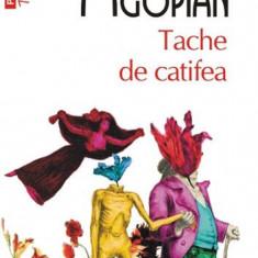 Tache de catifea (Top 10+)