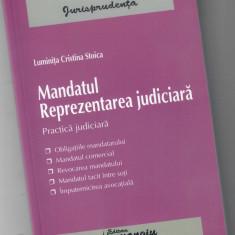 Mandatul. Reprezentarea judiciara, Luminita Cristina Stoica