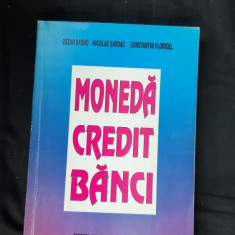 MONEDA CREDIT BANCI- DARDAC , FLORICEL