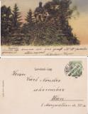 Carei (Satu Mare) -clasica , rara