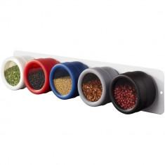 Set suport condimente, 5 piese, Everestus, MN01, otel inoxidabil, abs si ps plastic, multicolor, saculet inclus