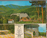 CPIB 15342 - CARTE POSTALA - SANGEORZ BAI. MOZAIC