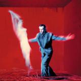 Peter Gabriel Us LP (2vinyl)