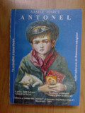 B2b Antonel - VASILE MARCU