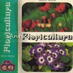 Floricultura - Milea Preda