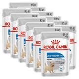 Cumpara ieftin Royal Canin Light Weight Care Dog Loaf pliculeț dietetic cu pate pentru câini 12 x 85 g