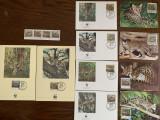 Salvador - feline - serie 4 timbre MNH, 4 FDC, 4 maxime, fauna wwf