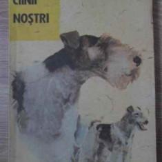 CAINII NOSTRI BULETIN DOCUMENTAR NR.1/1989 - COLECTIV