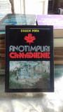 ANOTIMPURI CANADIENE - EUGEN POPA