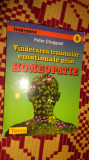 vindecarea traumelor emotionale prin homeopatie 235pagini peter chappell