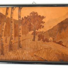 Ornament vechi de perete tablou cu intarsie din lemn - peisaj montan