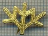 Y 1803 INSIGNA - MILITARA -SEMN DE ARMA -VANATORI DE MUNTE  -PENTRU COLECTIONARI