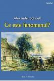 Ce este fenomenul? | Alexander Schnell