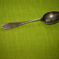 Lingurita suedeza argintata