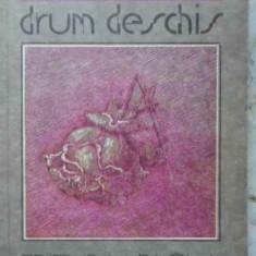 DRUM DESCHIS - ARTHUR SCHNITZLER