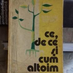 CE, DE CE SI CUM ALTOIM - STELIAN BECHET