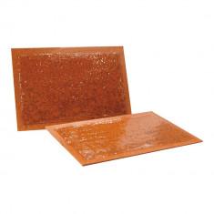 Placi adezive anti rozatoare pentru capturare soareci